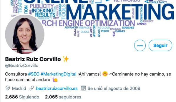 ejemplo de bio en perfil de Twitter